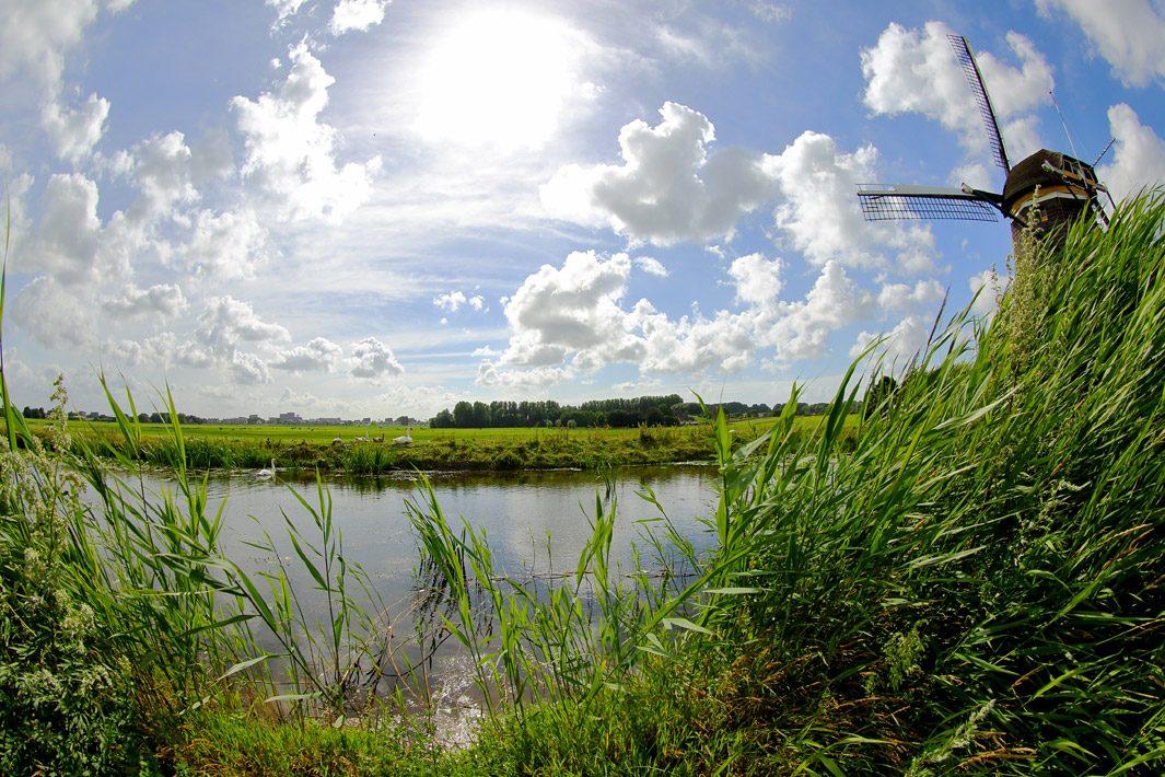Natuur fotografie Zuid Holland