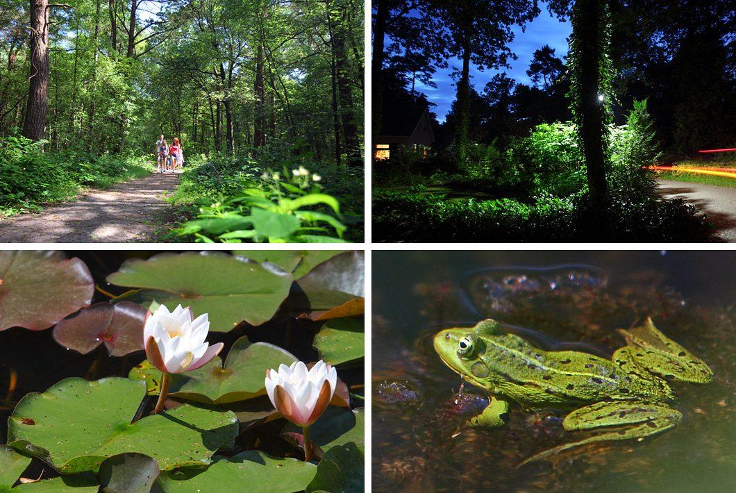 Natuurfotografie op een vakantiepark