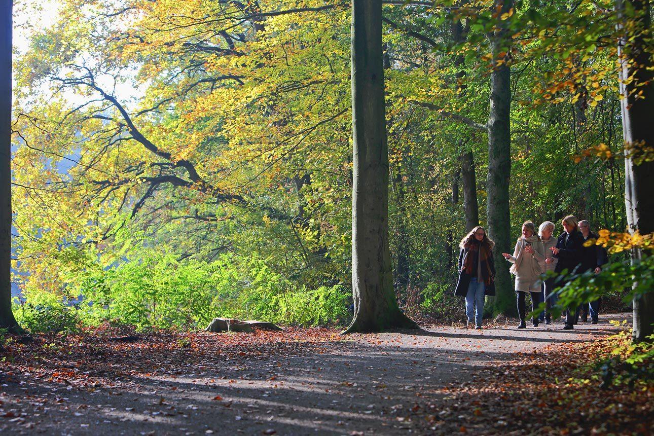 Natuurfotografie in Zuid Holland, Den Haag