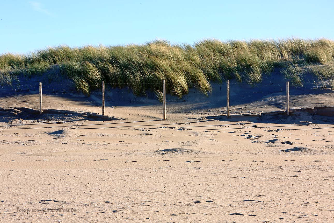 201118-strand-WilmarDik-09