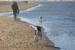 201118-strand-WilmarDik-14
