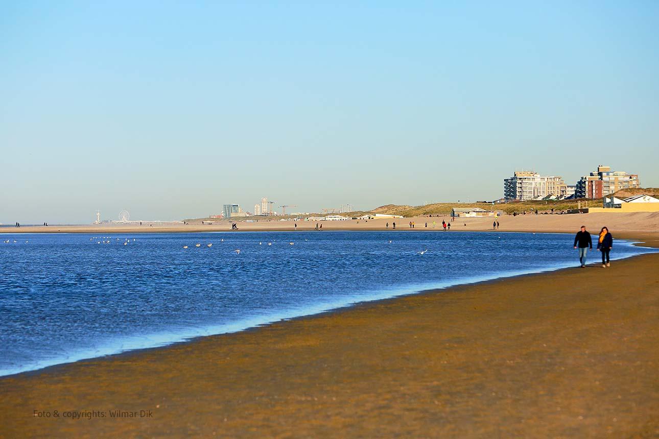 201118-strand-WilmarDik-45