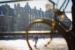 210213-DenHaag-sneeuw-09
