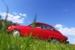 210416-1-AutoBaasje-008